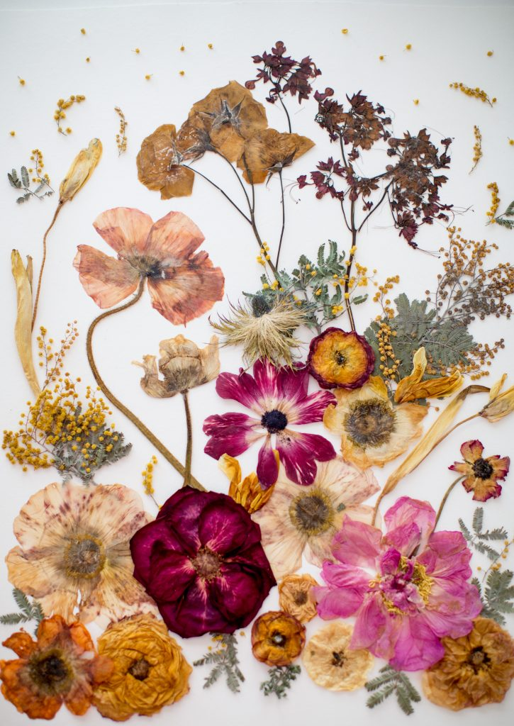 Culture N Lifestyle | CNL — Stunning Pressed Flower Art by